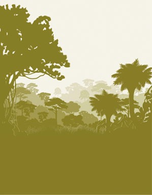 Når du handler hos Dyrkhaven.dk går nogle af pengene til at redde regnskov - Dyrkhaven.dk gør det nemt at dyrke din have