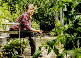 Om Nisse der står bag Dyrkhaven.dk - Dyrkhaven.dk gør det nemmere at dyrke din have