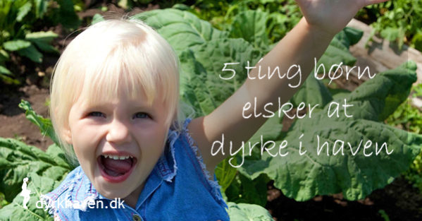 5 ting børn elsker at dyrke i haven - plus 10 bonustip - Dyrkhaven.dk gør det nemt at dyrke din have