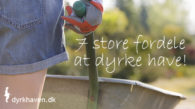 7 store fordele ved at dyrke have - Dyrkhaven.dk gør det nemmere at dyrke din have