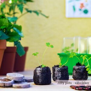 Praktiske såbrikker - jiffy pots - der passer perfekt til vindueskarmens minidrivhus. Den nemmeste måde at så på - Dyrkhaven.dk gør det nemt at dyrke din have