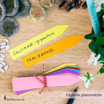 Festlige planteskilte i blandede farver fortæller dig, hvor du har sået dine forskellige frø - Dyrkhaven.dk gør det nemt at dyrke din have