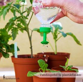 Med vandingsproppen undgår du at skade dine spirer og småplanter - Dyrkhaven.dk gør det nemt at dyrke din have