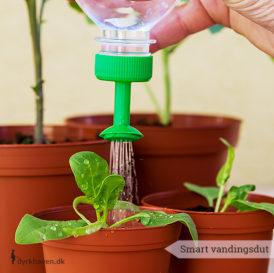 Smart vandingsprop der kan skrues på en plastikflaske og sikre dine spirer en blid vanding - Dyrkhaven.dk gør det nemt at dyrke din have