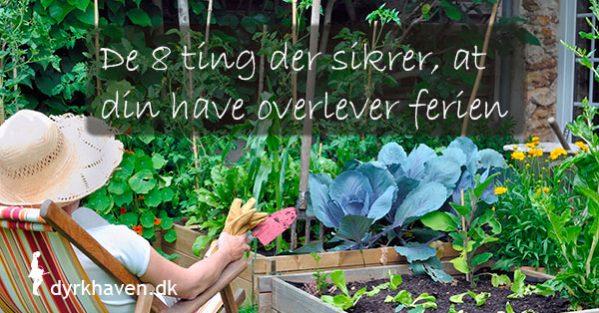 De 8 ting der gør, at din have overlever, at du tager væk på ferie - Dyrkhaven.dk gør det nemt at dyrke din have