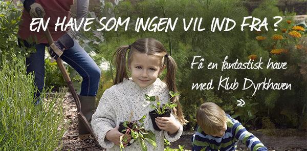 Få en have som ingen vil ind fra med hjælp fra Klub Dyrkhaven - Dyrkhaven.dk gør det nemt at dyrke din have