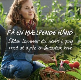 Få en hjælpende hånd - Sådan kommer du nemt i gang med at dyrke en fantastisk have med Klub Dyrkhaven