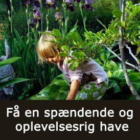 Få en spændende have med Klub Dyrkhaven på Dyrkhaven.dk
