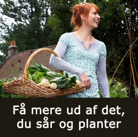 Få mere ud af det, du sår og planter med Klub Dyrkhaven på Dyrkhaven.dk