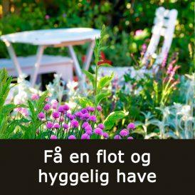 Få en flot og hyggelig have med Klub Dyrkhaven på Dyrkhaven.dk