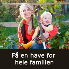Få en have for hele familien med Klub Dyrkhaven på Dyrkhaven.dk