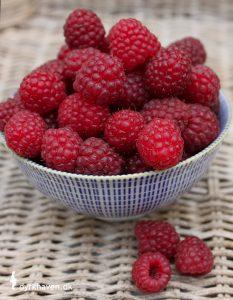 Hindbær er en af de 14 nemmeste, spiselige planter, som du selv kan dyrke i din have - Dyrkhaven.dk gør det nemt at dyrke din have