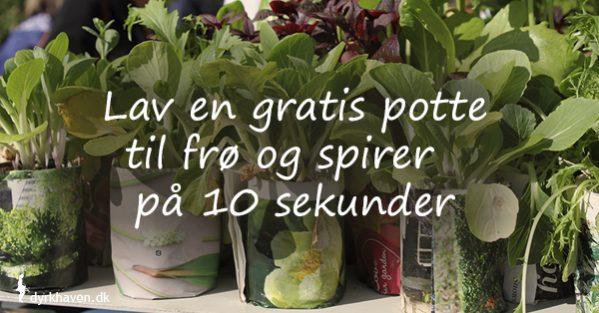 De nemmeste og billigste potter til dine frø og spirer, kan du selv lave af avispapir - Dyrkhaven.dk gør det nemt at dyrke din have