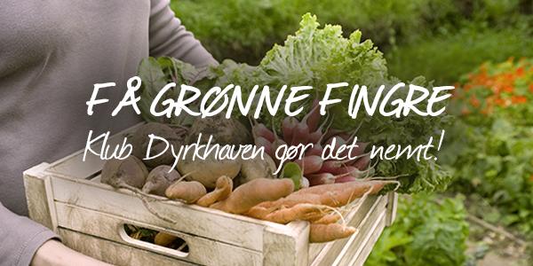 Få grønne fingre med Klub Dyrkhaven. hvor du får en hjælpende hånd og lærer at skabe dig en fantastisk og frodig have - Dyrkhaven.dk gør det nemt at dyrke have