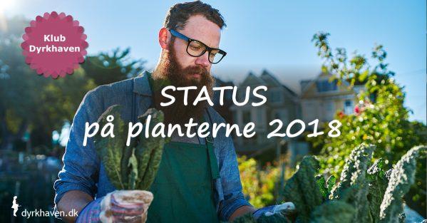 Lav en status på planterne i haven i år og bliv meget klogere på, hvordan du dyrker en flot og frodig have - Klub Dyrkhaven gør det nemmere at dyrke din have