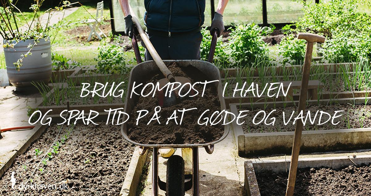 Kompost gøder jorden og gør bedre i strukturen, så den ikke skal vandes så ofte. Læg derfor kompost ud i bedene om foråret - Klub Dyrkhaven gør det nemt at dyrke din have