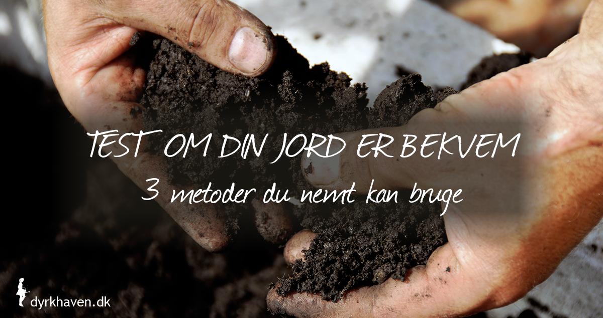 Få 3 nemme metoder til at teste, om jorden i din have er bekvem og klar til at arbejde med - Klub Dyrkhaven gør det nemmere at dyrke din have