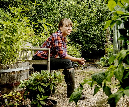 Følg med på Dyrkhaven.dks blog og få gode tips til en nemmere have