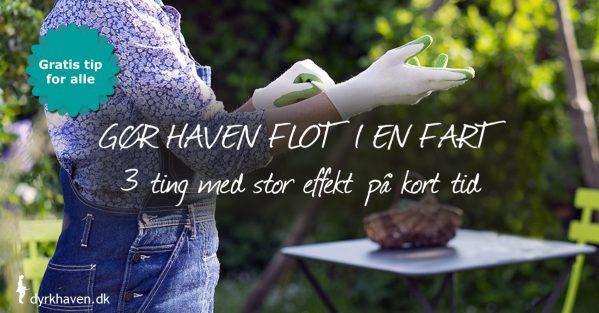 Gør haven klar til gøster på kun 3 timer med de her 3 effektive tips - Dyrkhaven.dk gør det nemmere at dyrke din have