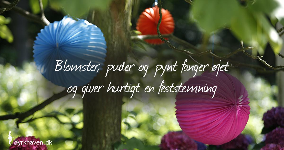 Gør haven flot og festlig i en fart med de her 3 tips - Dyrkhaven.dk gør det nemmere at dyrke din have