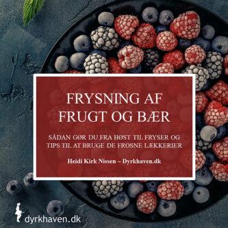 E-bog Frysning af frugt og bær - Sådan gør du fra høst til fryser samt tips til at bruge de frosne lækkerier - Dyrkhaven.dk