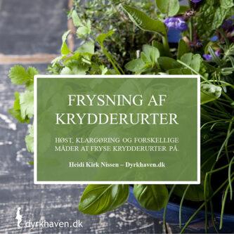 E-bog Frysning af krydderurter - Høst, klargøring for forskellige gode måder at fryse krydderurter på - Dyrkhaven.dk