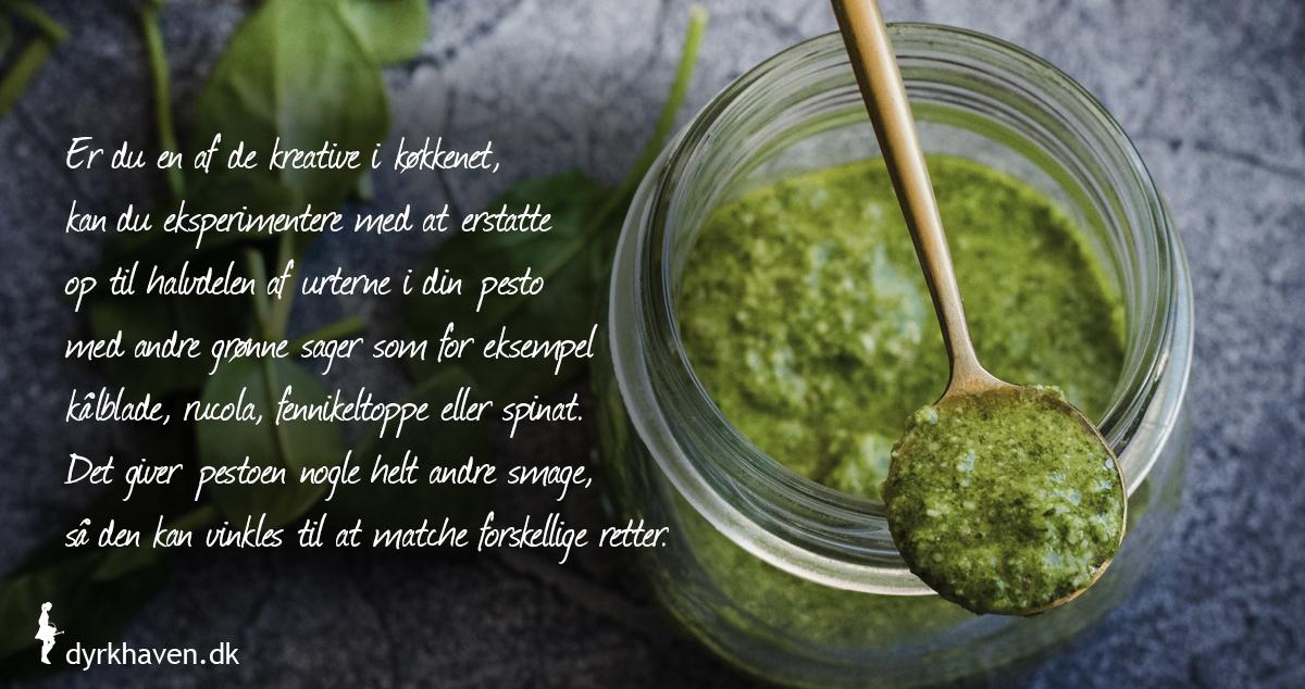 Vær kreativ og brug bladgrønsager i din pesto sammen med krydderurterne fra haven - Dyrkhaven.dk gør det nemt at dyrke din have