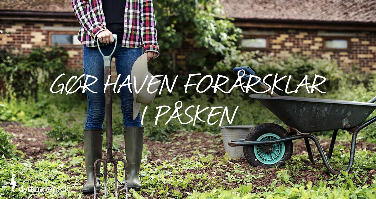 Få 10 tips til at gøre haven forårsklar i løbet af påsken marts og april - Dyrkhaven.dk gør det nemt at dyrke have