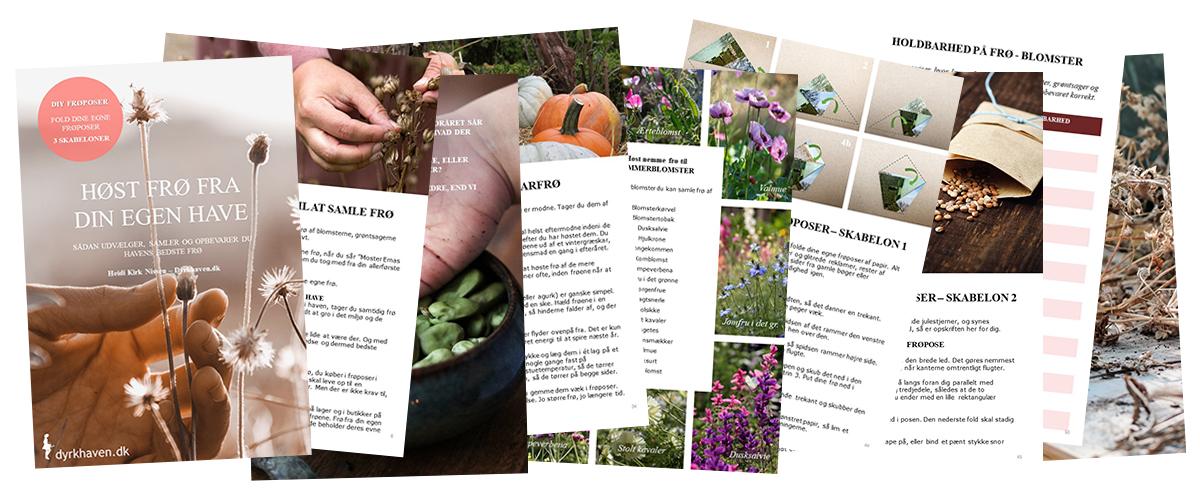 E-bog - Høst frø fra din egen have. Sådan udvælger, samler og opbevarer du havens bedste frø - Dyrkhaven.dk