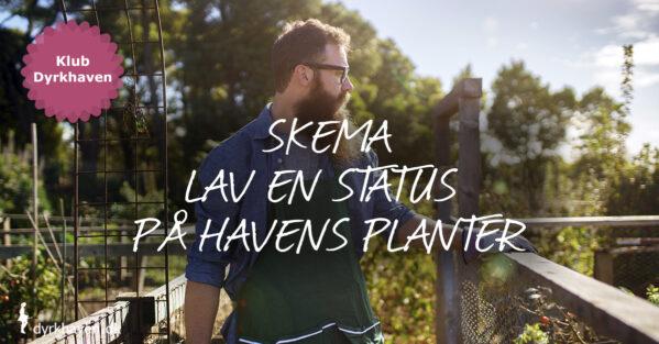 Brug Klub Dyrkhavens skema til at lave en status på havens planter i år - Klub Dyrkhaven