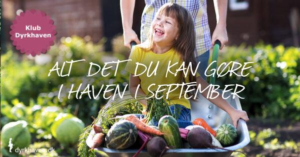 Se hvad du kan gøre i din have i køkkenhaven, blomsterbedene og græsplænen m.m. i Klub Dyrkhaven